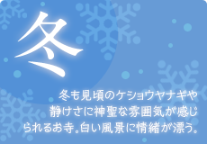 img_winter.png